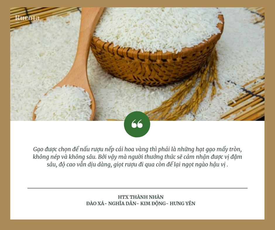 Gạo làm rượu nếp cái hoa vàng hạ thổ